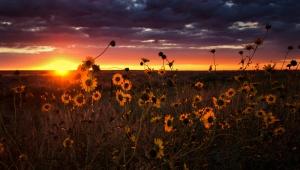 Day's end in God's Beauty.copyright Rodney Steele